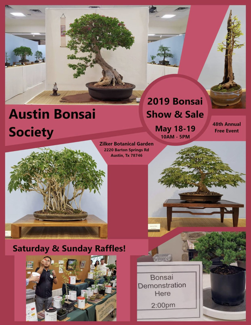 2019 Bonsai Show Sale In Austin At Zilker Botanical Garden
