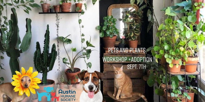 Pets & Plants w/ Austin Humane Society at Succulent Native