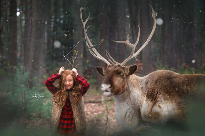 Middleboro Christmas Fair 2020 Fantasy Holiday Imaging for Children! in Boston at South