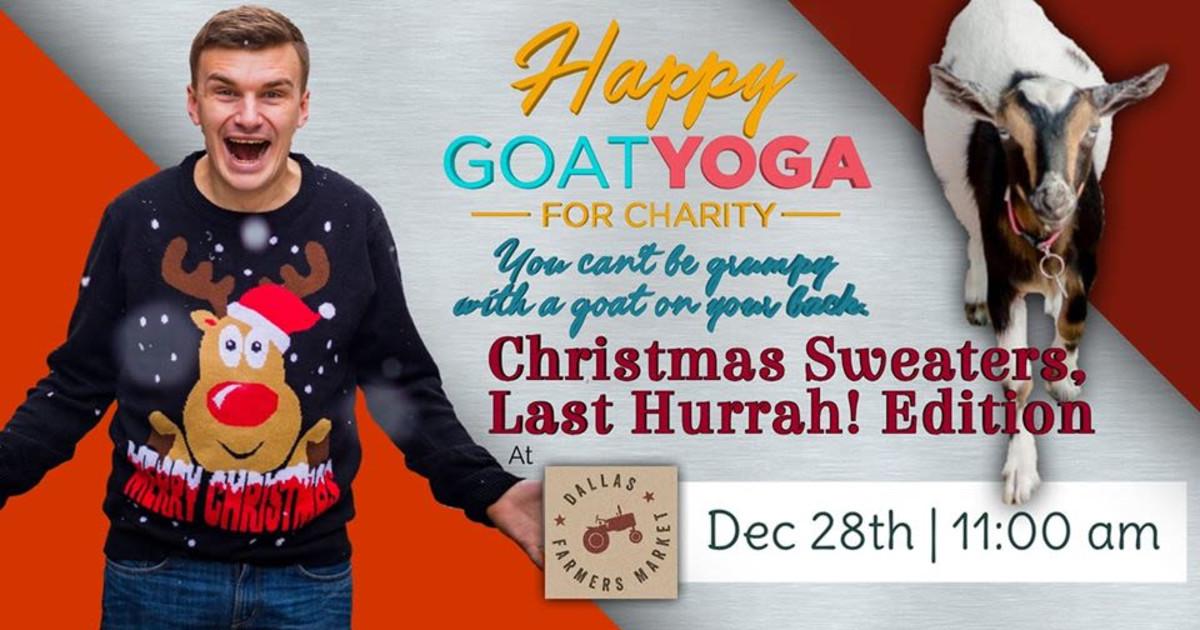 Happy Goat Yoga Christmas Sweater S Last Hurrah In Dallas At