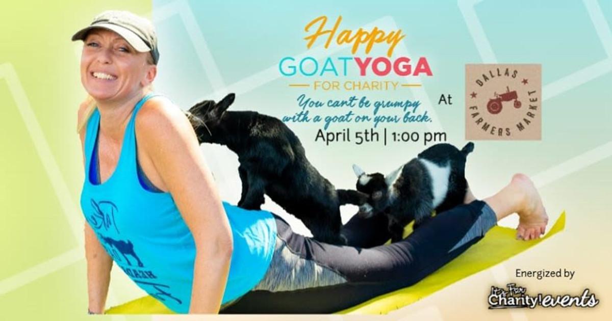 Happy Goat Yoga For Charity In Dallas At Dallas Farmers Market